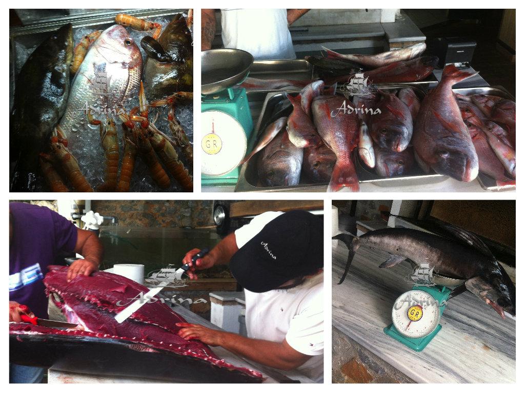 skopelos-restaurants-tuna-5